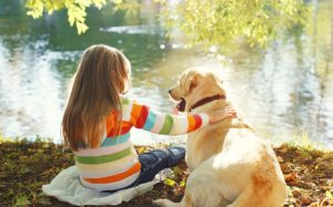 Issue of Pet Visitation in Divorce