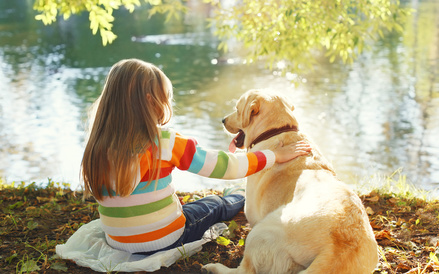 Issue of Pet Visitation in Divorce